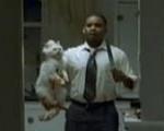Véres macska, megölt beteg és a többiek (Reklámmustra)