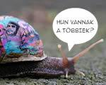 Még kevesebbet ér a magyar minimálbér az Unióban