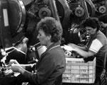 50 éves a Legrand szentesi gyára