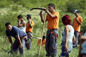 Félmillió közmunkás hazája lehet Magyarország