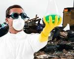 Magyarok oldhatják meg a műanyaglebomlás rejtélyét