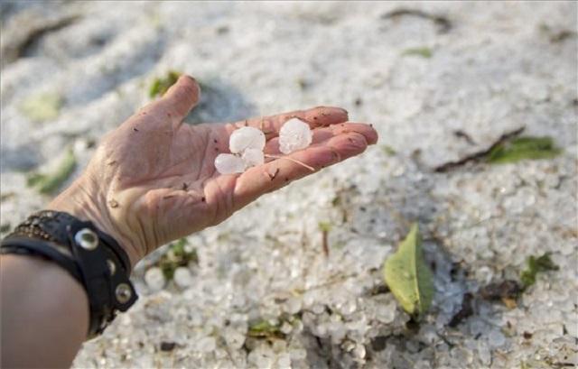 Negyedére csökkentheti a kárt az ország új jégelhárító rendszere