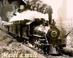 Uszály vagy vonat